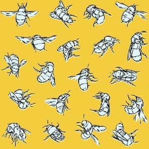 Bombus hortorum Yellow