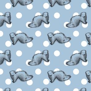 Ferrets and polka-dots - blue