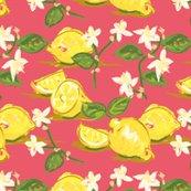 Rrchintzy_citrus_plain-01_shop_thumb