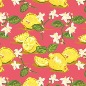 Chintzy Citrus co-ordinate