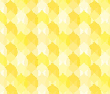 Rjust_lemons-01_shop_preview