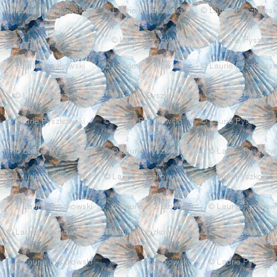 Blue Scallop Shells