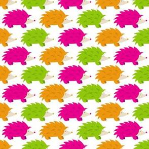 Hedgehog Parade