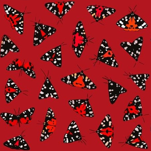Scarlet Tiger Red