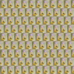 lemonade_small