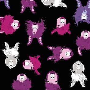 Jonny Llama