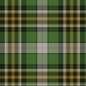Green Plaid 7