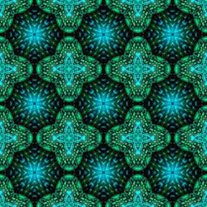 Cactusin_09