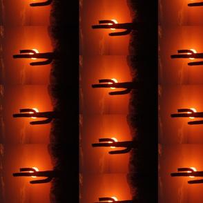 Cactus Sunset No. 2