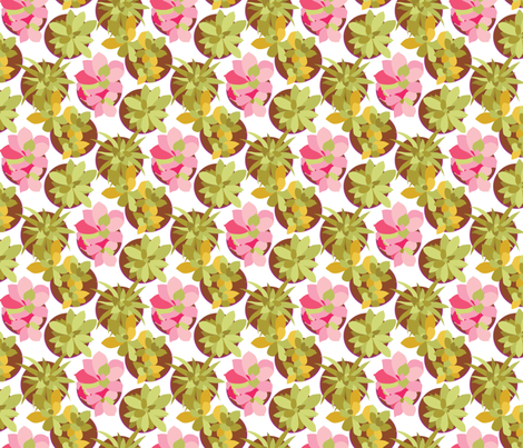 Succulents Abound Fiesta fabric by laine_and_leo on Spoonflower - custom fabric