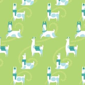llama dance in lime