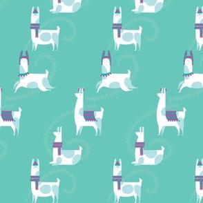 llama dance in teal