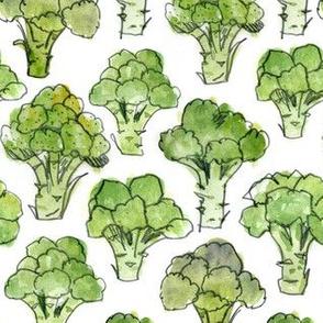 Broccoli - Formal