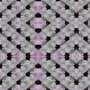 pink_floral-ed