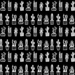 cactus pots // black and white potted plants houseplant tropical agave