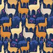 Llamas Evening Stroll_12inchRpt