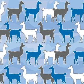 Llama_white