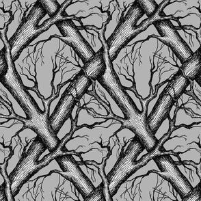 Branches - bare