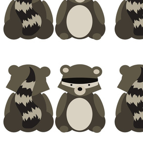 raccoon_whole