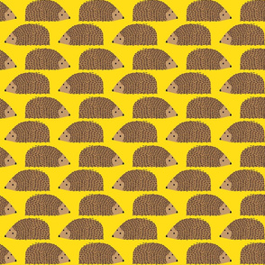 Little Hedgehogs on Yellow