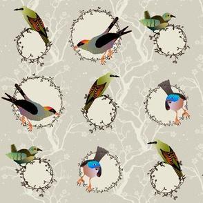 songbird winter dot
