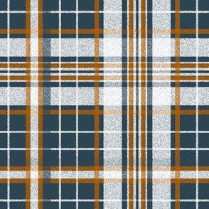 Bonfire Nights ~ Flannel Tartan ~ Bonfire and White on Hermitage
