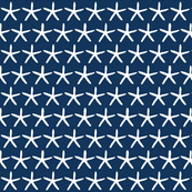 Starfish on navy