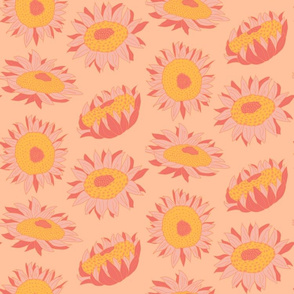 Sunflowers - Creamsicle