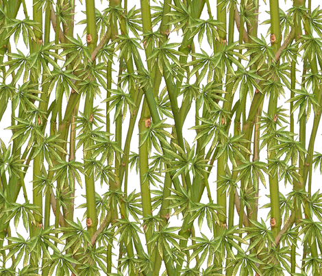 Stalks & Fan Leaves fabric by camomoto on Spoonflower - custom fabric
