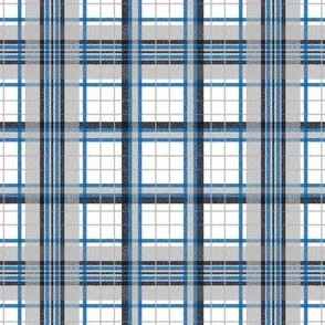 Flannel Plaid ~ Dormitory
