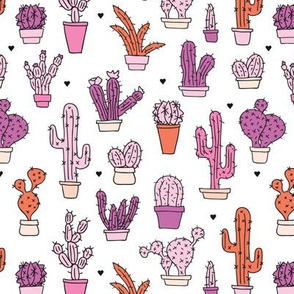 Cactus cacti summer garden botanical pink girls illustration trend pattern