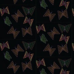 butterfly3_7_5_2015