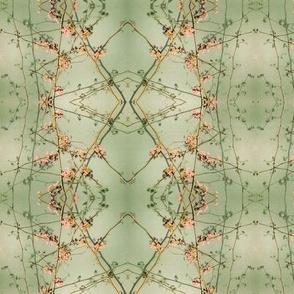 Redbud (Helix Green)