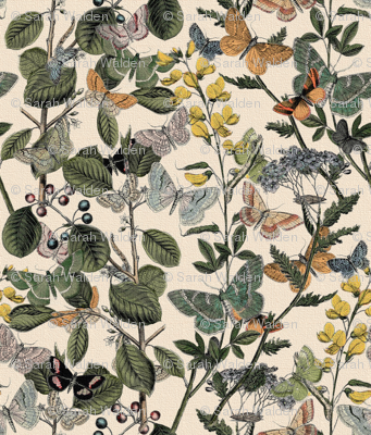 Autumn In The Butterflies' Garden