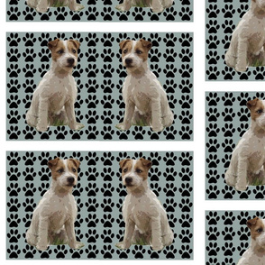 Jack Russell creations