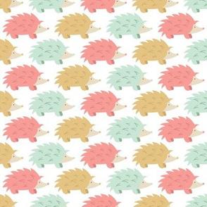 Spring Hedgehog Parade