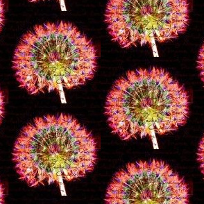 Dandelion Wishes For All - 2