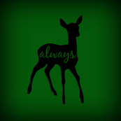 Doe_Always