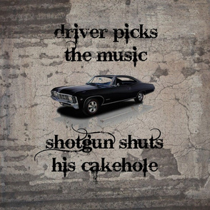 Driver_Picks_the_Music