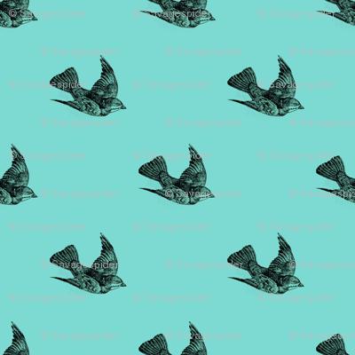 Nautical Sparrows