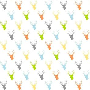 Baby Boy Deer