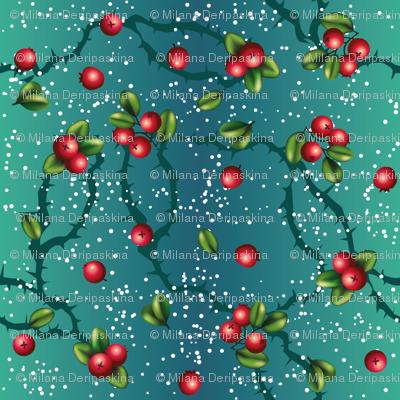 Cranberry on turqoise