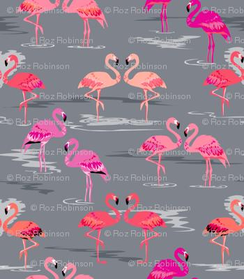 flamingos love grey