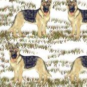 Rrgerman_shepherd_on_snow_rev_shop_thumb