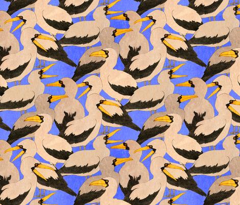 Nazca Booby fabric by laurenjmyers on Spoonflower - custom fabric