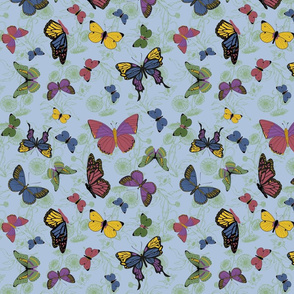 butterflies_main2