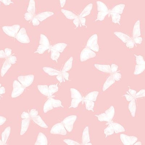 Butterflies for Sophy Girl