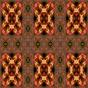 Cavernite8_08