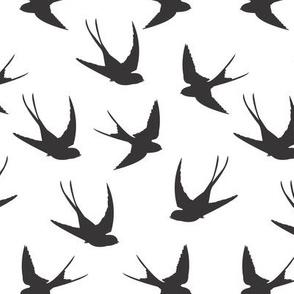 SwallowsBW