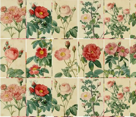 Antique_roses_-_pinks_and_reds_-_10cm_by_15cm_rectangles_shop_preview